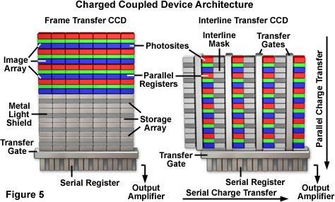 Hamamatsu Learning Center: Electronic Imaging Detectors